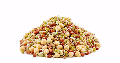 ORGANIC  SPROUTED MIXED BEANS